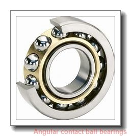 FAG 7203-B-2RS-TVP-L237  Angular Contact Ball Bearings