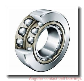 FAG 7205-B-2RS-TVP-L31  Angular Contact Ball Bearings