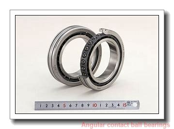 FAG 509091A Angular Contact Ball Bearings