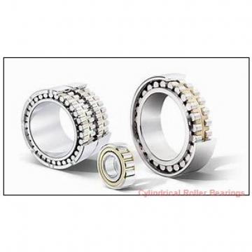 3.937 Inch | 100 Millimeter x 7.087 Inch | 180 Millimeter x 1.339 Inch | 34 Millimeter  CONSOLIDATED BEARING NJ-220E  Cylindrical Roller Bearings