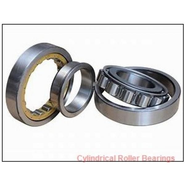 1.181 Inch | 30 Millimeter x 2.441 Inch | 62 Millimeter x 0.787 Inch | 20 Millimeter  CONSOLIDATED BEARING NJ-2206  Cylindrical Roller Bearings #1 image